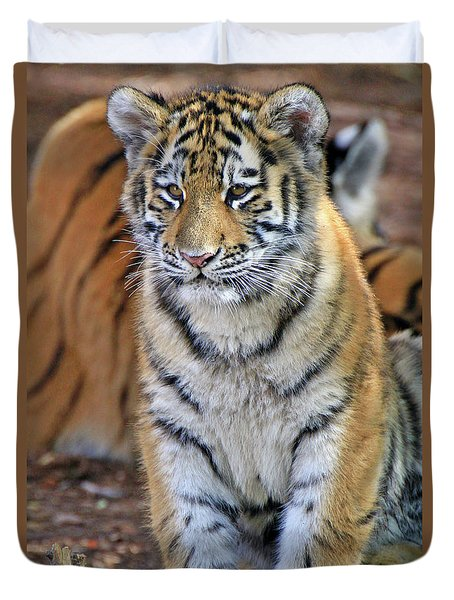 Baby Stripes Duvet Cover by Scott Mahon