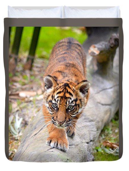 Baby Sumatran Tiger Cub Duvet Cover by Richard Bryce and Family