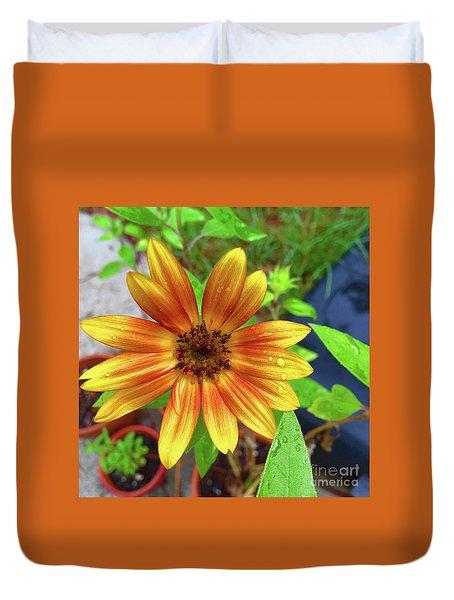 Baby Sunflower Grace Duvet Cover