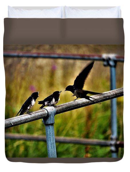 Baby Swallows Feeding Duvet Cover