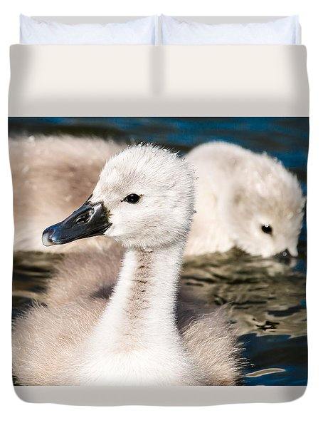 Baby Swan Close Up Duvet Cover