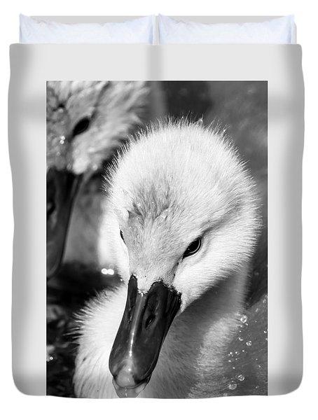 Baby Swan Headshot Duvet Cover