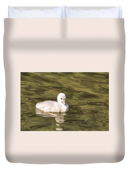 Duvet Cover featuring the photograph Baby Trumpeter Swan by Lynn Hopwood