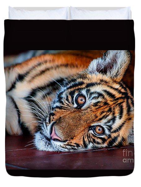 Baby Tiger Duvet Cover