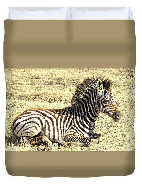 Baby Zebra Duvet Cover
