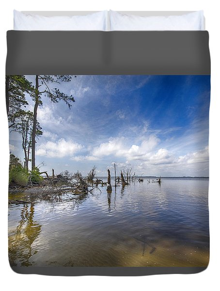 Back Bay View Duvet Cover
