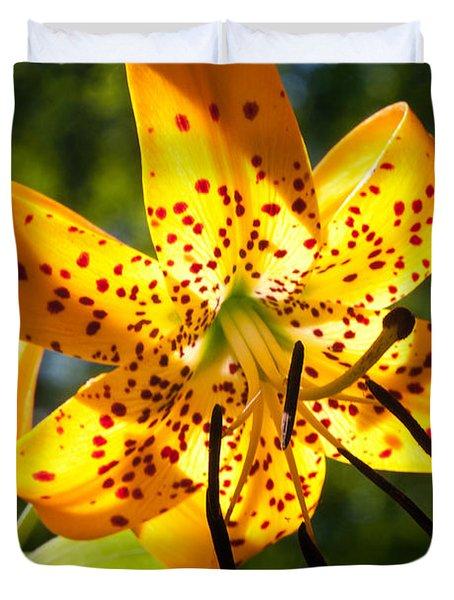 Back-lit Yellow Tiger Lily Duvet Cover by John Haldane