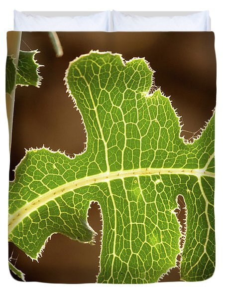 Duvet Cover featuring the photograph Back Side Light On A Leaf At Sunset by Yoel Koskas