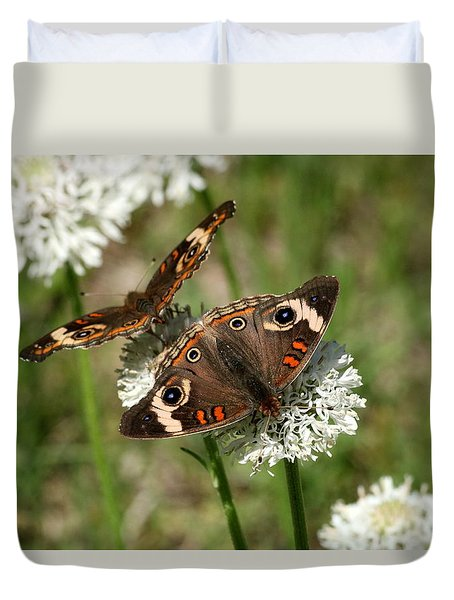 Back To Back Butterflies Duvet Cover by Sheila Brown