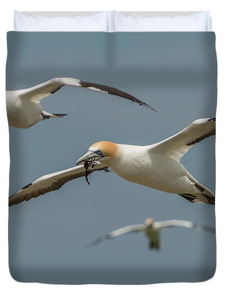 Back To The Colony Duvet Cover