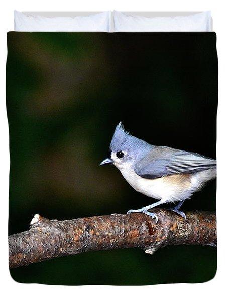 Back Yard Bird Duvet Cover