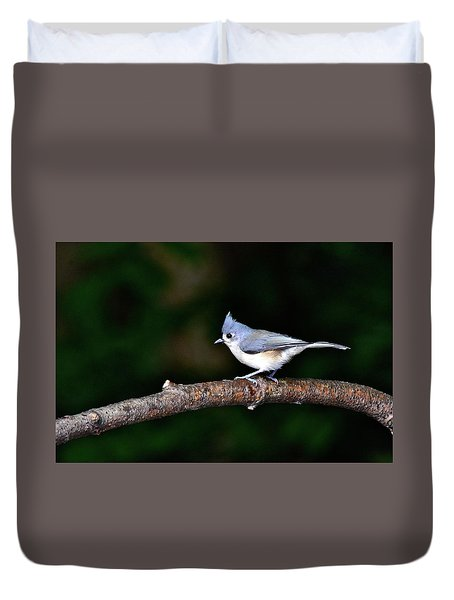Back Yard Bird Duvet Cover