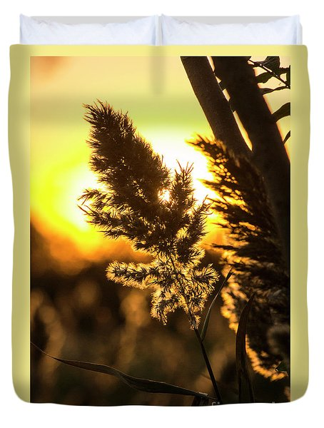 Duvet Cover featuring the photograph Backlit By The Sunset by Zawhaus Photography