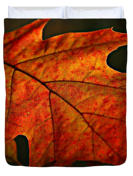 Duvet Cover featuring the photograph Backlit Leaf by Shari Jardina
