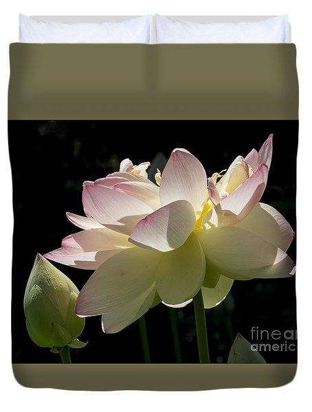 Backlit Lotus Blossom Duvet Cover