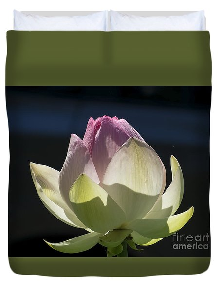 Backlit Lotus Bud 2015 Duvet Cover