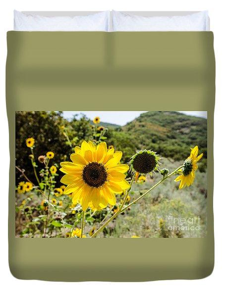 Backlit Sunflower Aka Helianthus Duvet Cover