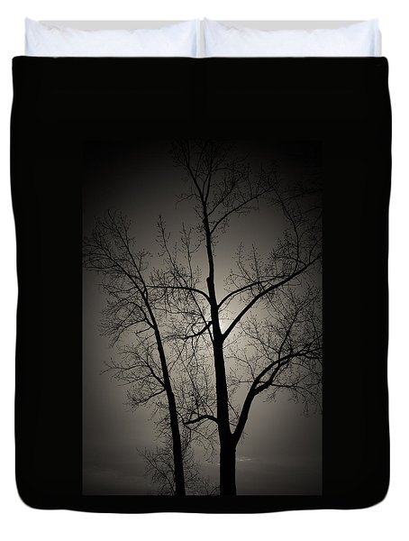Backlit Trees Duvet Cover