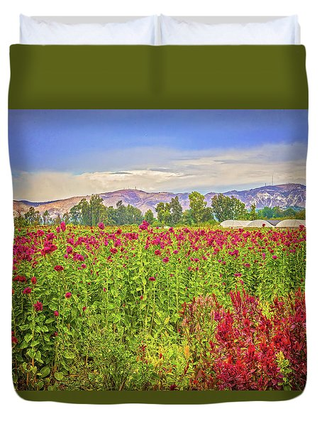 Backroad Beauty In Southern California Duvet Cover by Lynn Bauer