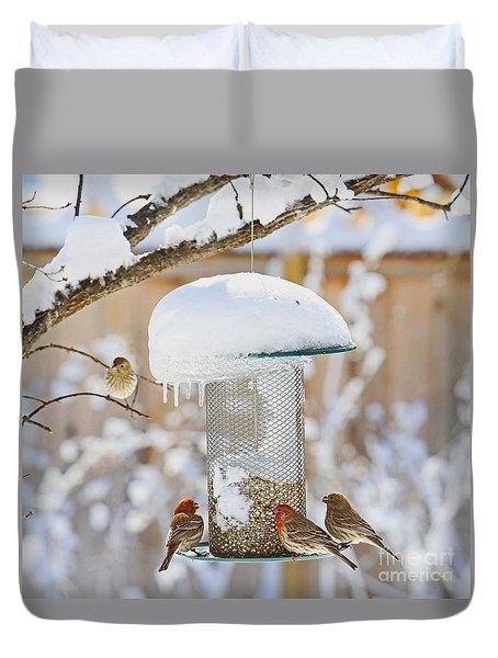 Backyard Birds Duvet Cover