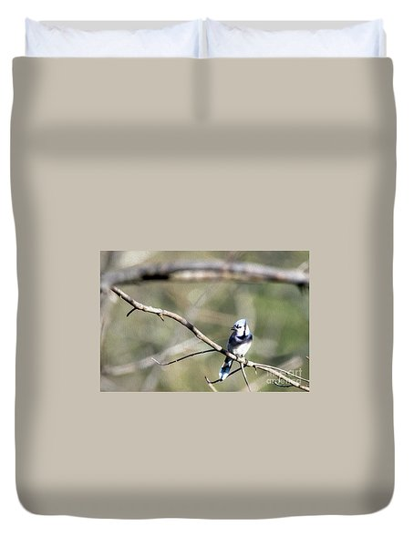Backyard Blue Jay Oil Duvet Cover