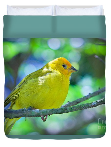 Balance Of Nature Edition 3 Duvet Cover by Judy Kay