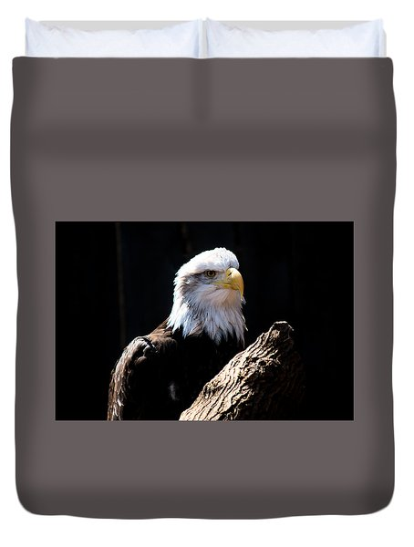 Bald Eagle Wil 272 Duvet Cover by G L Sarti
