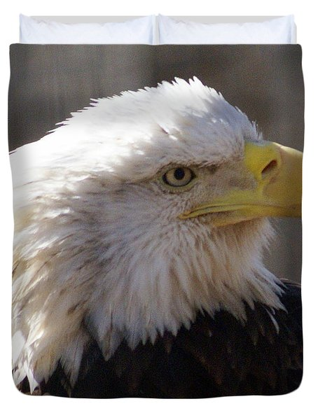 Bald Eagle 3 Duvet Cover by Marty Koch