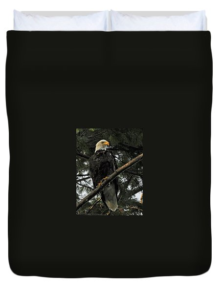 Duvet Cover featuring the photograph Bald Eagle by Glenn Gordon