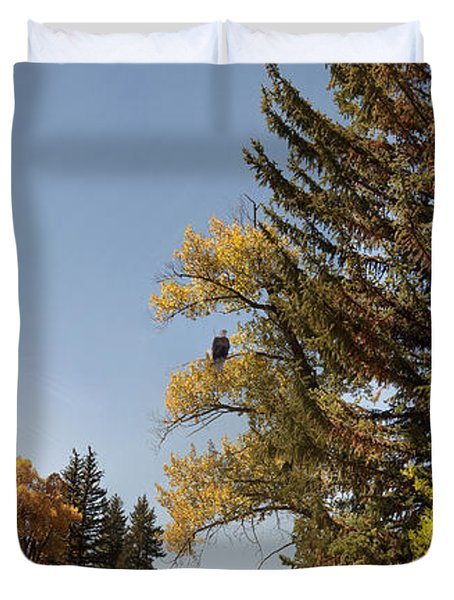 Duvet Cover featuring the photograph Bald Eagle At Big Creek Confluence by Daniel Hebard