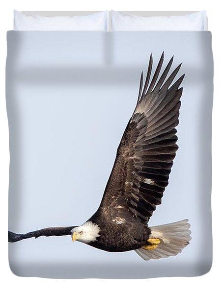 Bald Eagle Flying Over Horicon Marsh Duvet Cover