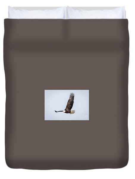 Bald Eagle Flying Over Horicon Marsh Duvet Cover