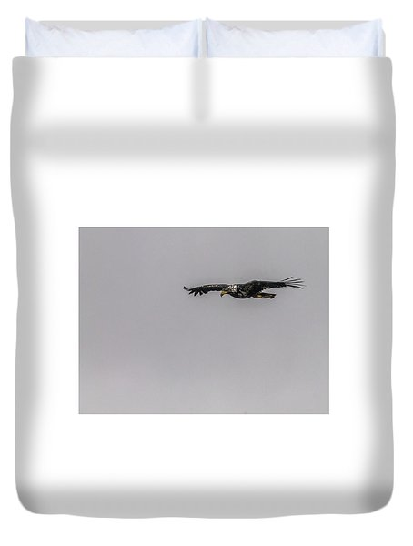 Bald Eagle Gliding Duvet Cover by Timothy Latta