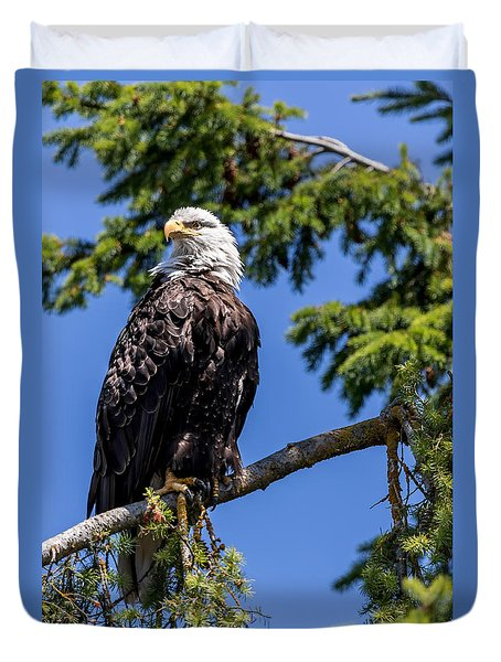Duvet Cover featuring the photograph Bald Eagle In Evergreen by Rob Green