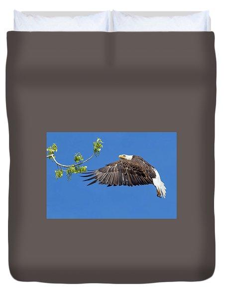Bald Eagle In Flight 4-25-17 Duvet Cover