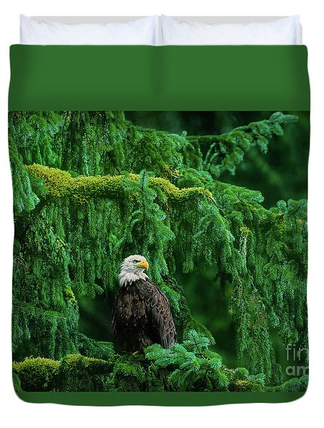 Duvet Cover featuring the photograph Bald Eagle In Temperate Rainforest Alaska Endangered Species by Dave Welling