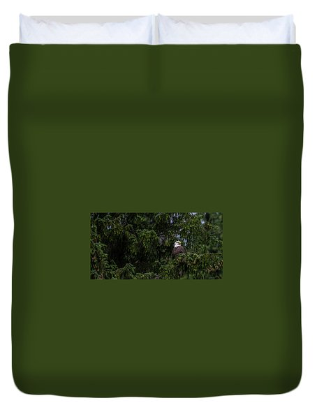 Bald Eagle In The Tree Duvet Cover