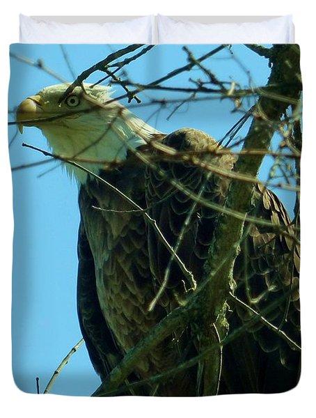 Bald Eagle Keeping Guard Duvet Cover
