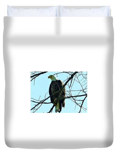 Bald Eagle Over The Root River Duvet Cover