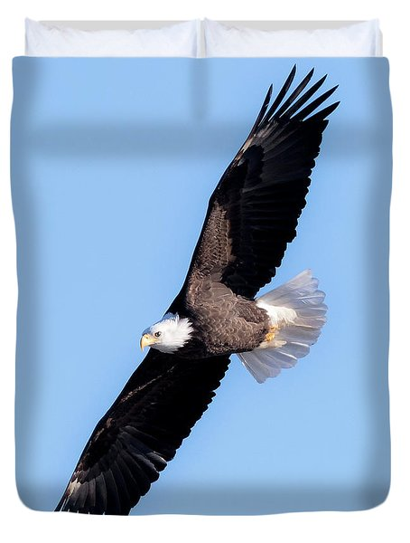 Bald Eagle Overhead  Duvet Cover