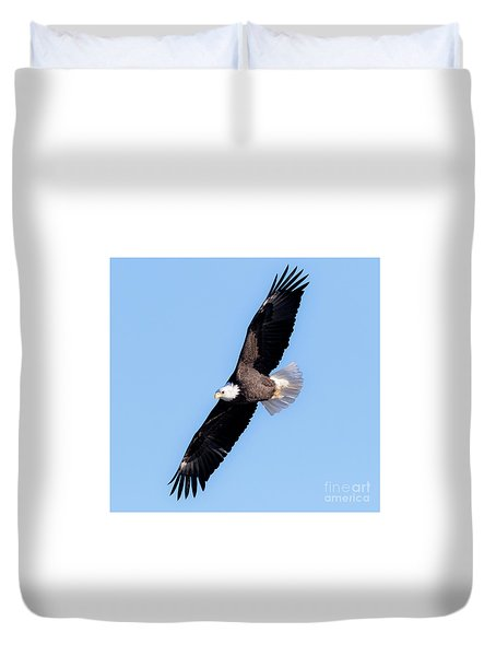 Bald Eagle Overhead  Duvet Cover