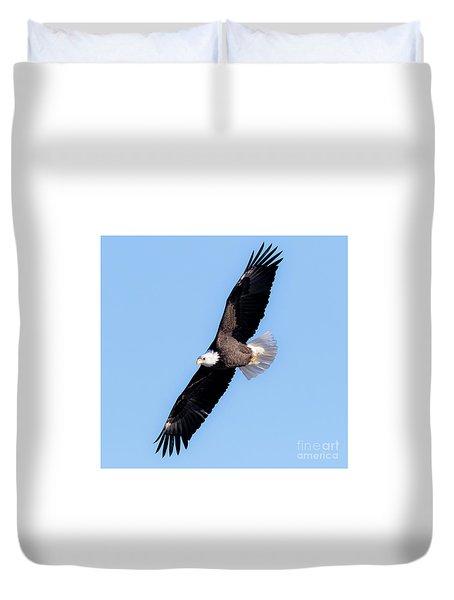 Bald Eagle Overhead  Duvet Cover by Ricky L Jones