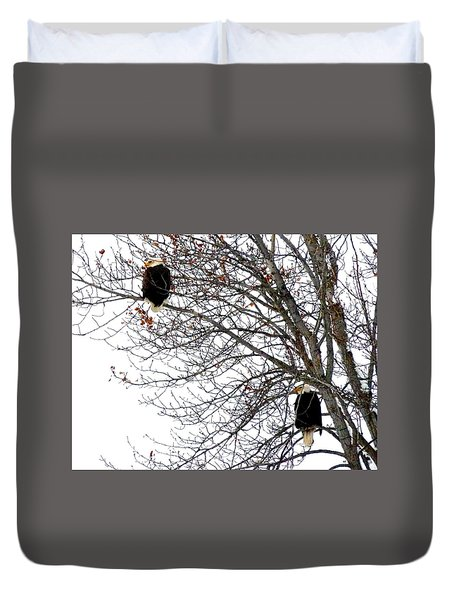 Bald Eagle Pair Duvet Cover by Will Borden