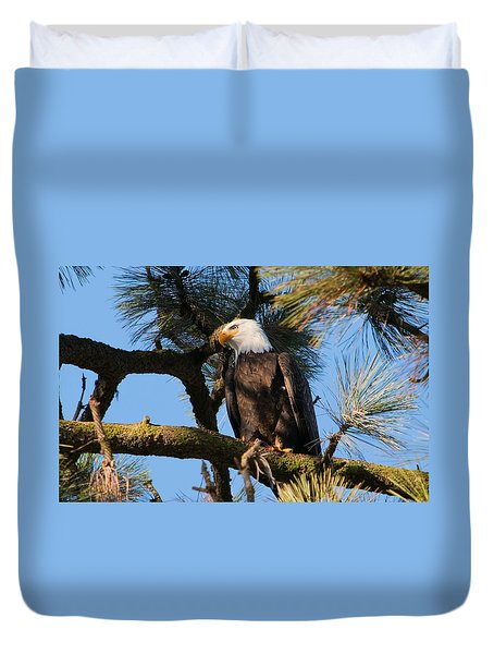 Bald Eagle Perch Duvet Cover