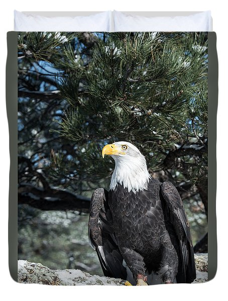 Bald Eagle Ready For Flight Duvet Cover