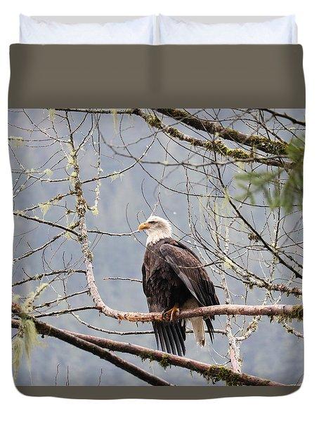 Bald Eagle Resting Duvet Cover