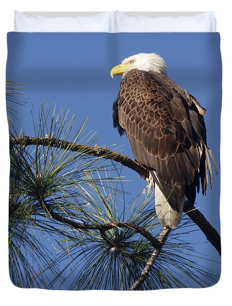 Bald Eagle Duvet Cover by Sally Weigand