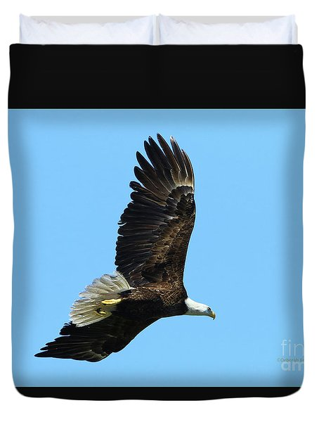 Duvet Cover featuring the photograph Bald Eagle Series IIi by Deborah Benoit