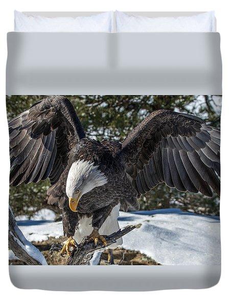 Bald Eagle Spread Duvet Cover