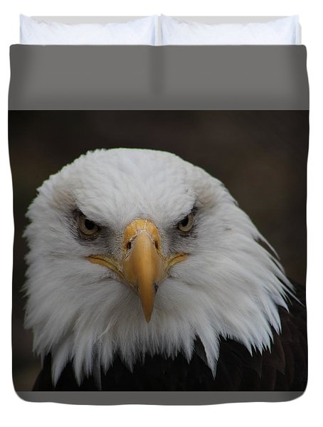 Bald Eagle Stare  Duvet Cover